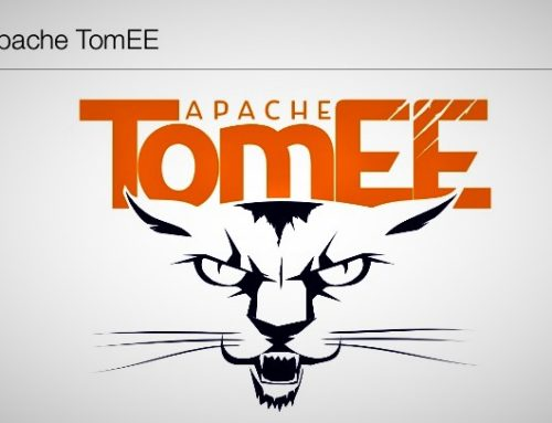 Security Vulnerability —Apache TomEE